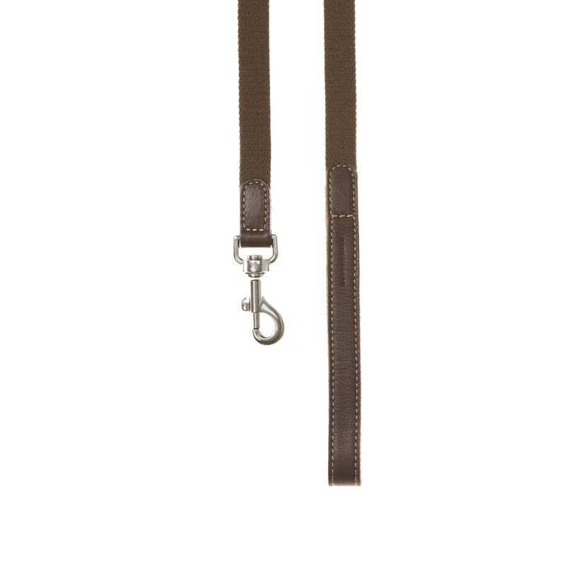 Ring Harness Dog Lead