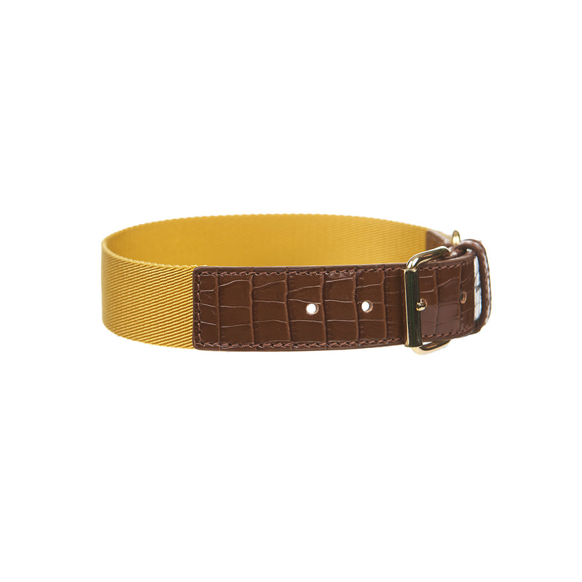 Nile Dog Collar