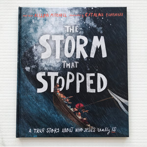 The Storm that Stopped: A true story about who Jesus really is