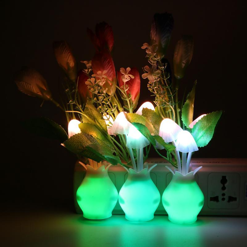 LED Glow Bloom Night Light - TEROF