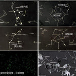 Constellation Star Map - TEROF