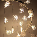 Christmas Lights - TEROF