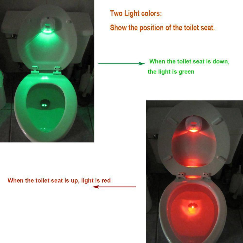 Toilet Night Sight Light - TEROF