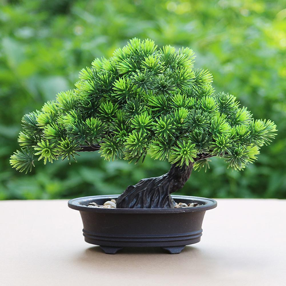 1Pc Artificial Pine Bonsai Small Green Tree Plants with Pot - Plant - Gaghy.com