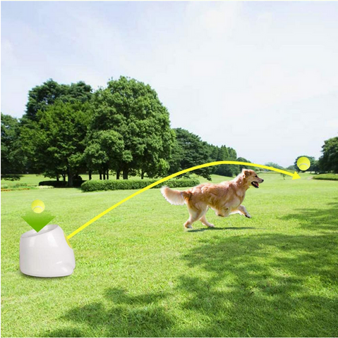 Automatic ball launcher dog toy training fun game pet