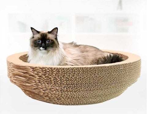 Cat Scratcher Bed Pettish