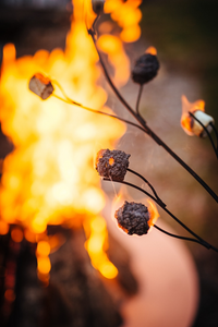Fire Pit Art Marshmallow Roasting Branch - The Fire Pit Collection