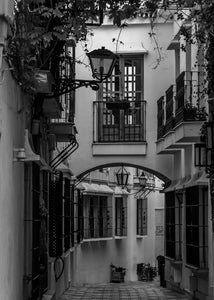 Spanish Pathway (Black and White)
