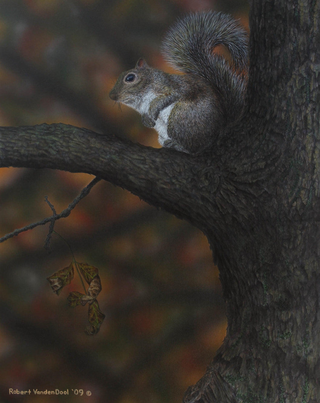 Squirrel in Autumn Twilight (Original)