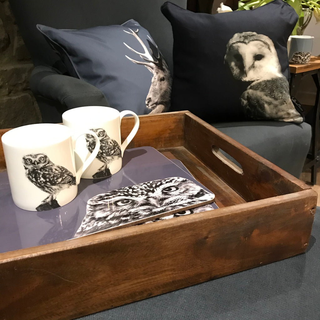 Owl and Bird Homewares and Gifts
