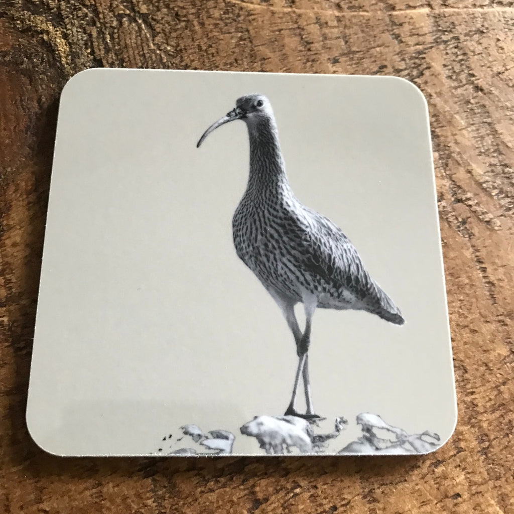 Coaster - Curlew - Sand Grey