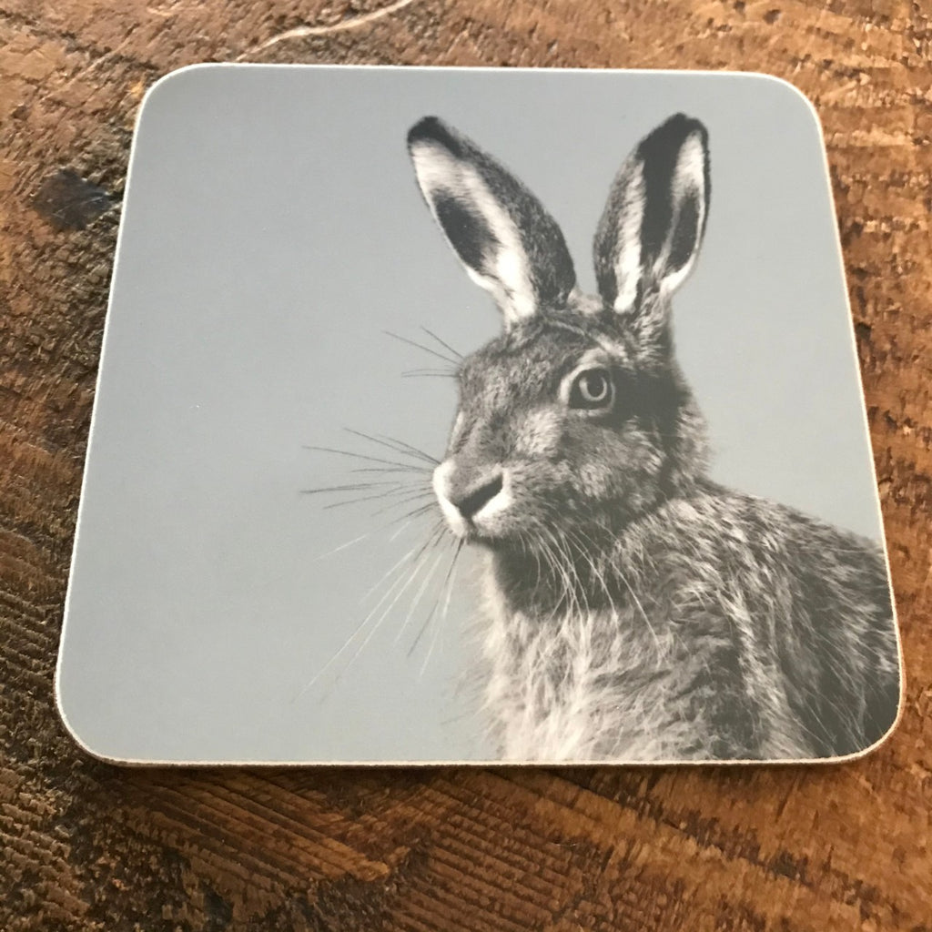 Coaster - Hare - Blue Grey