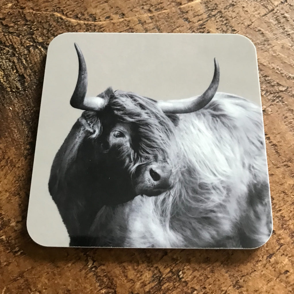 Coaster - Windswept Highland Cow - Sand Grey