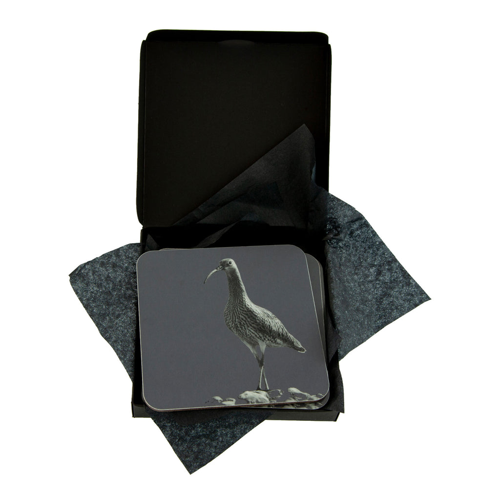 Curlew Coaster - Charcoal