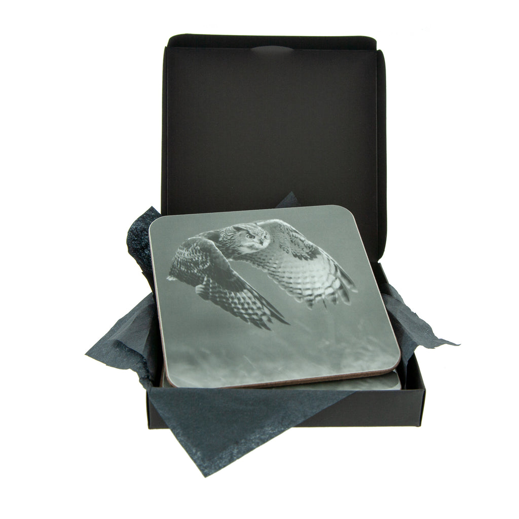 Eagle Owl Grey Coaster