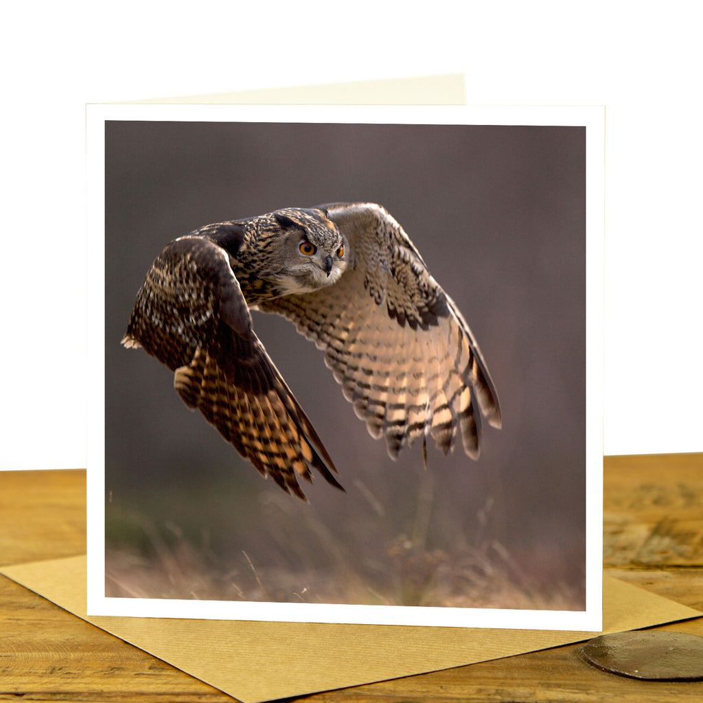 Eagle Owl Greeting Card - Flying Eagle Owl