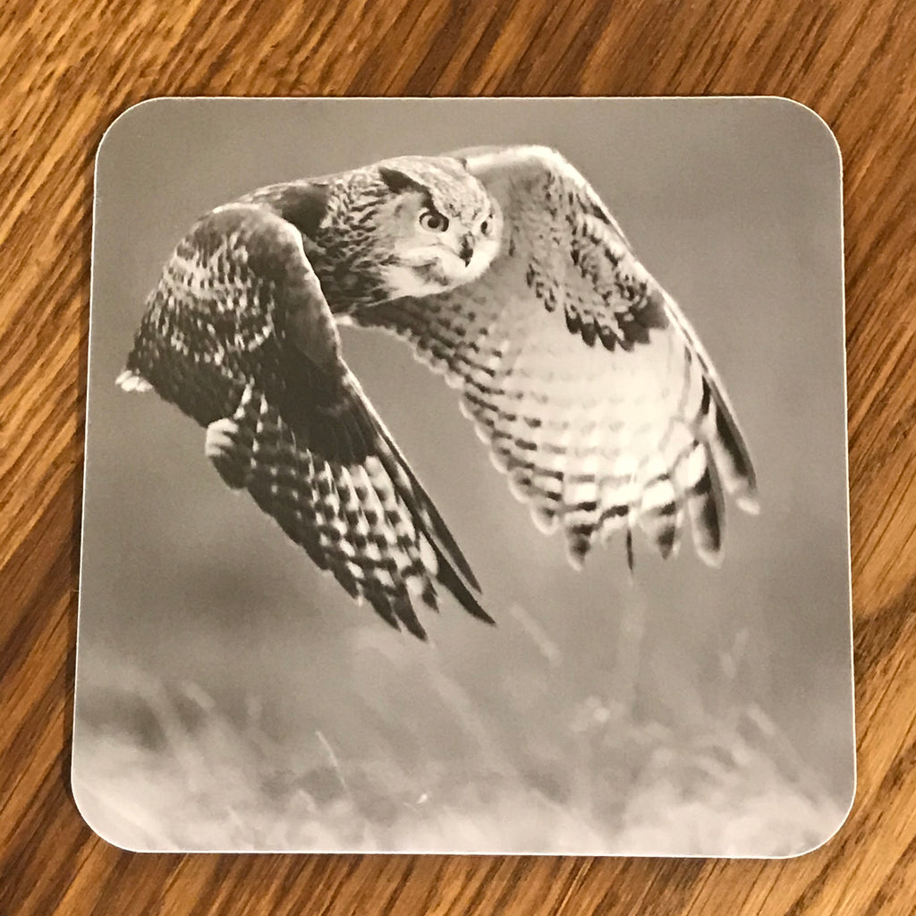 Eagle owl coaster