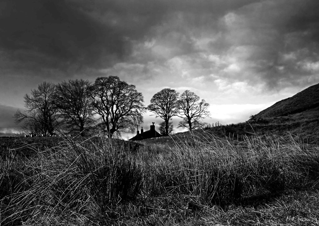 Embsay Moor, Landscape Photography  - Yorkshire Dales - Print