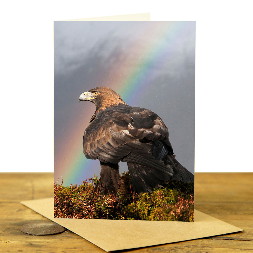 Golden Eagle Greeting Card - Golden Eagle and Rainbow