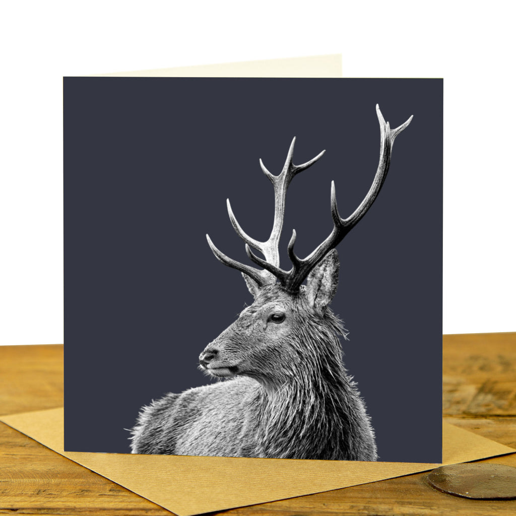 Highland Stag Greeting Card - Charcoal