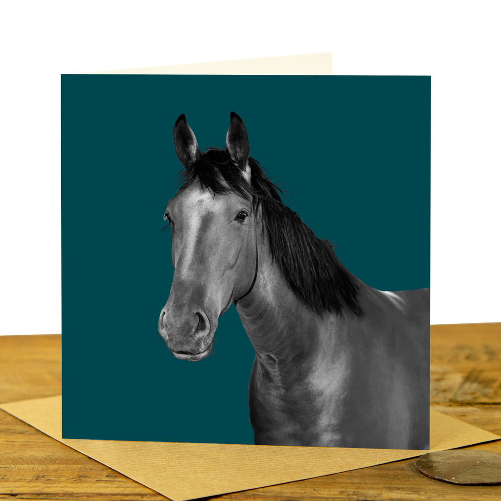 Horse Greeting Card - Teal