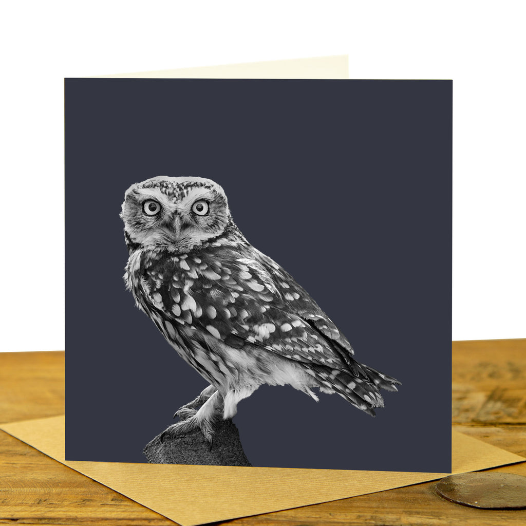 Little Owl Card - Little Owl Standing - Charcoal