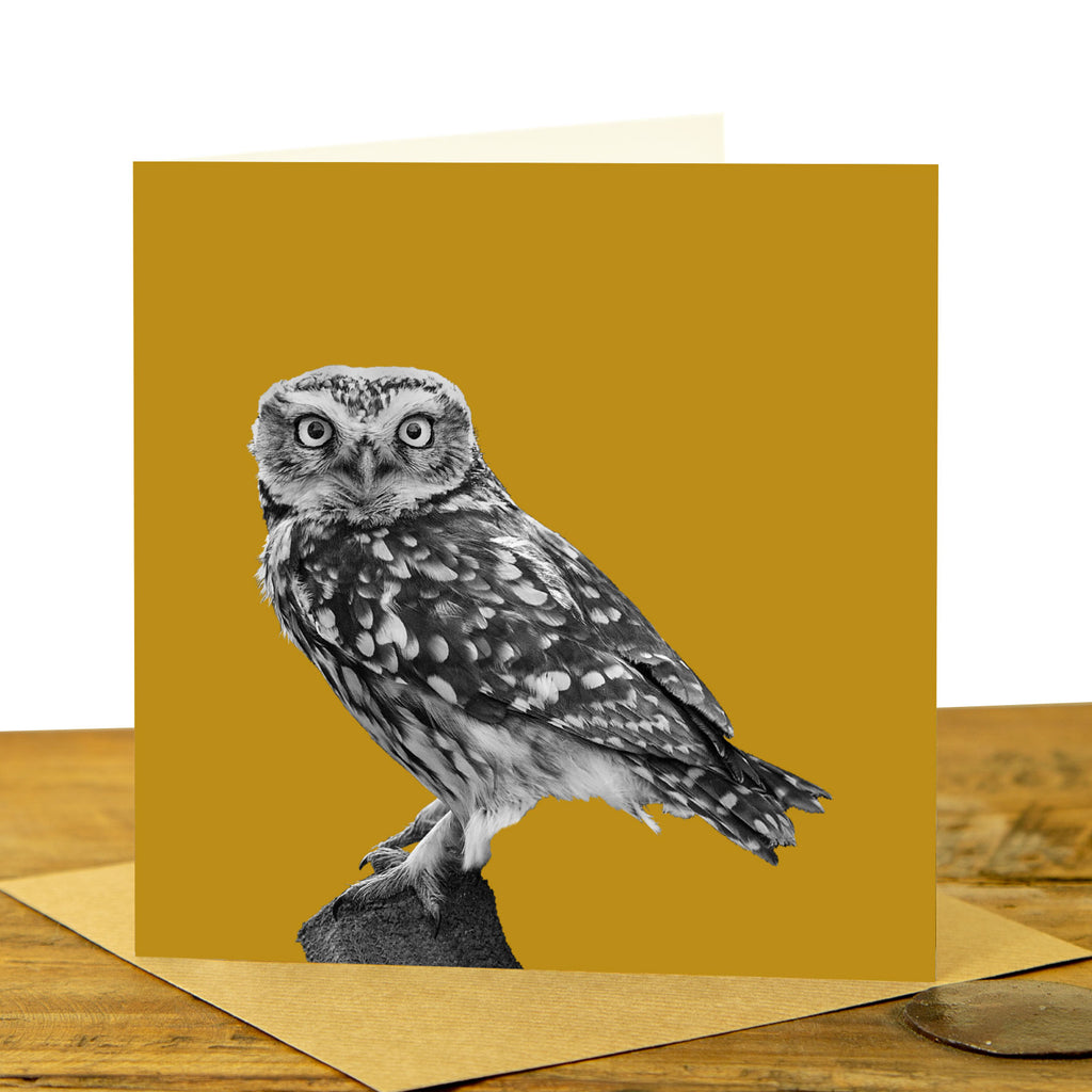 Little Owl Card - Little Owl Standing - Mustard