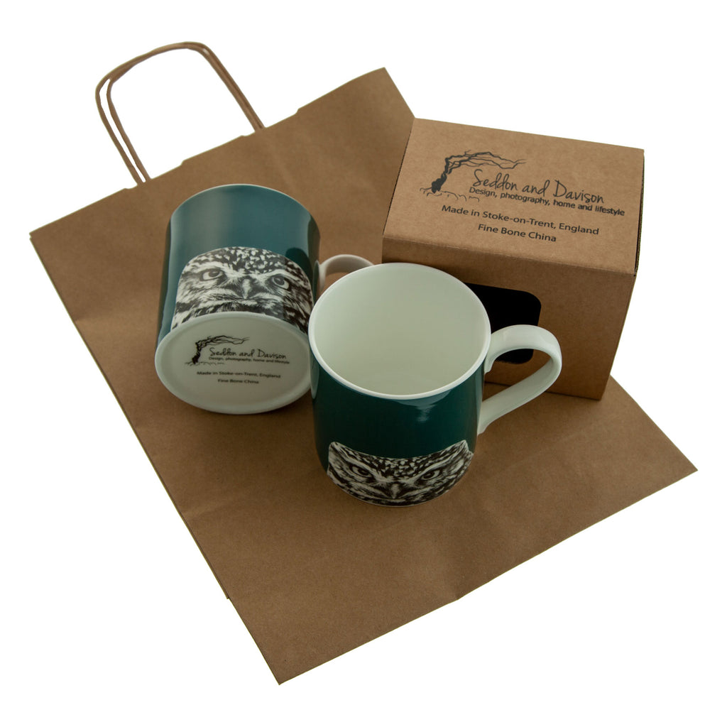 Little owl Teal Mug - Peeking - Fine Bone China