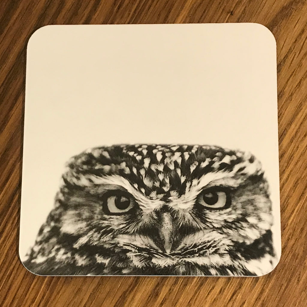 Little Owl Peeking Coaster - White