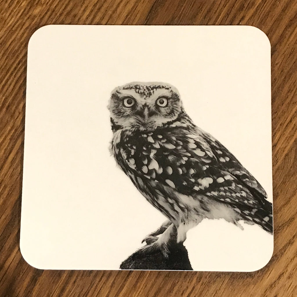 Little Owl Standing Coaster