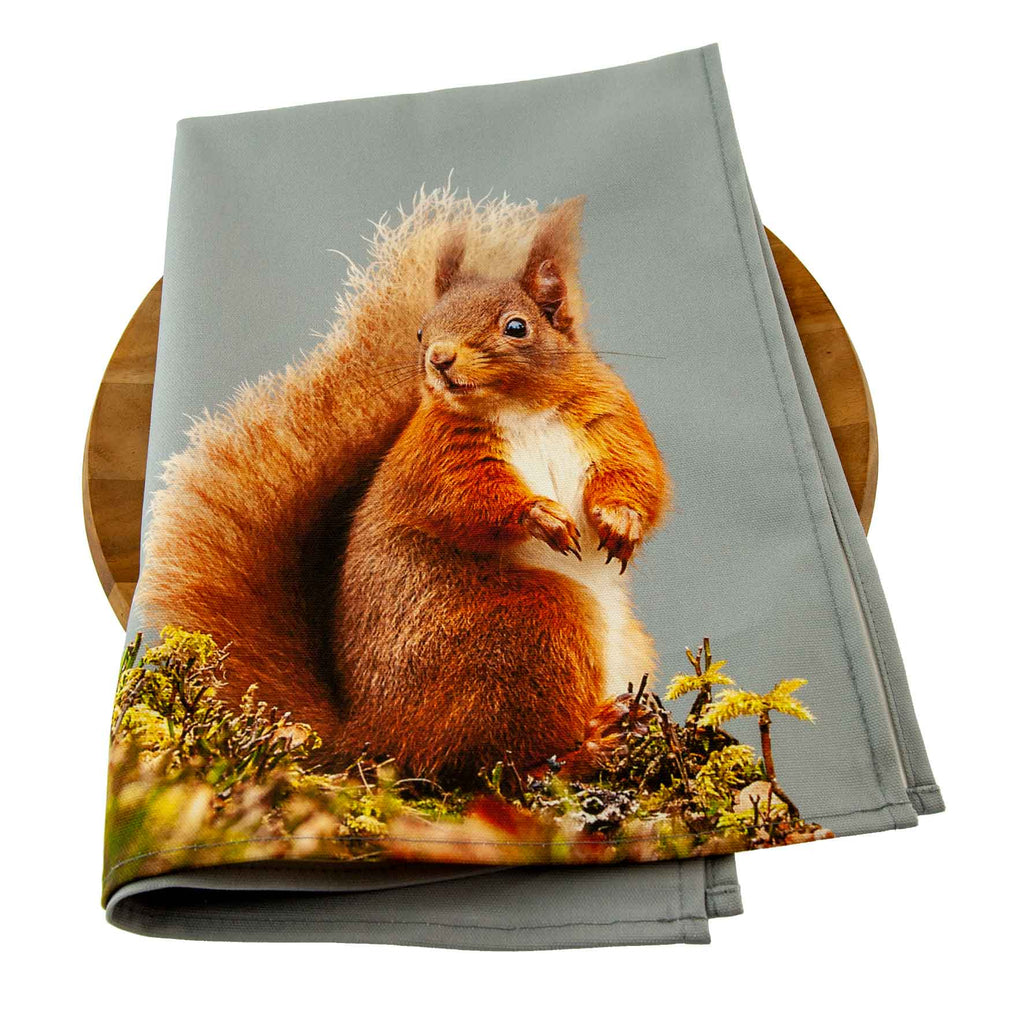 Red squirrel tea towel - pale grey