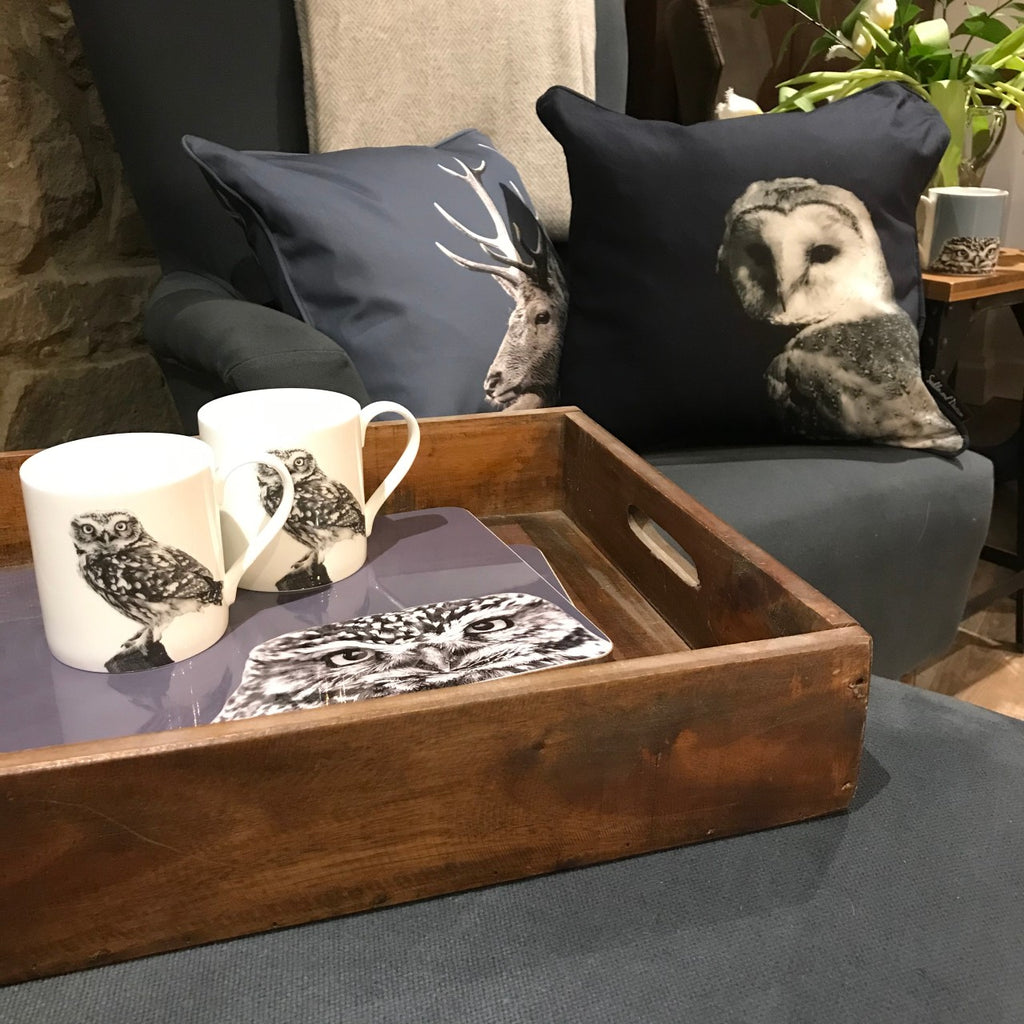 Barn Owl Cushion - Lifestyle