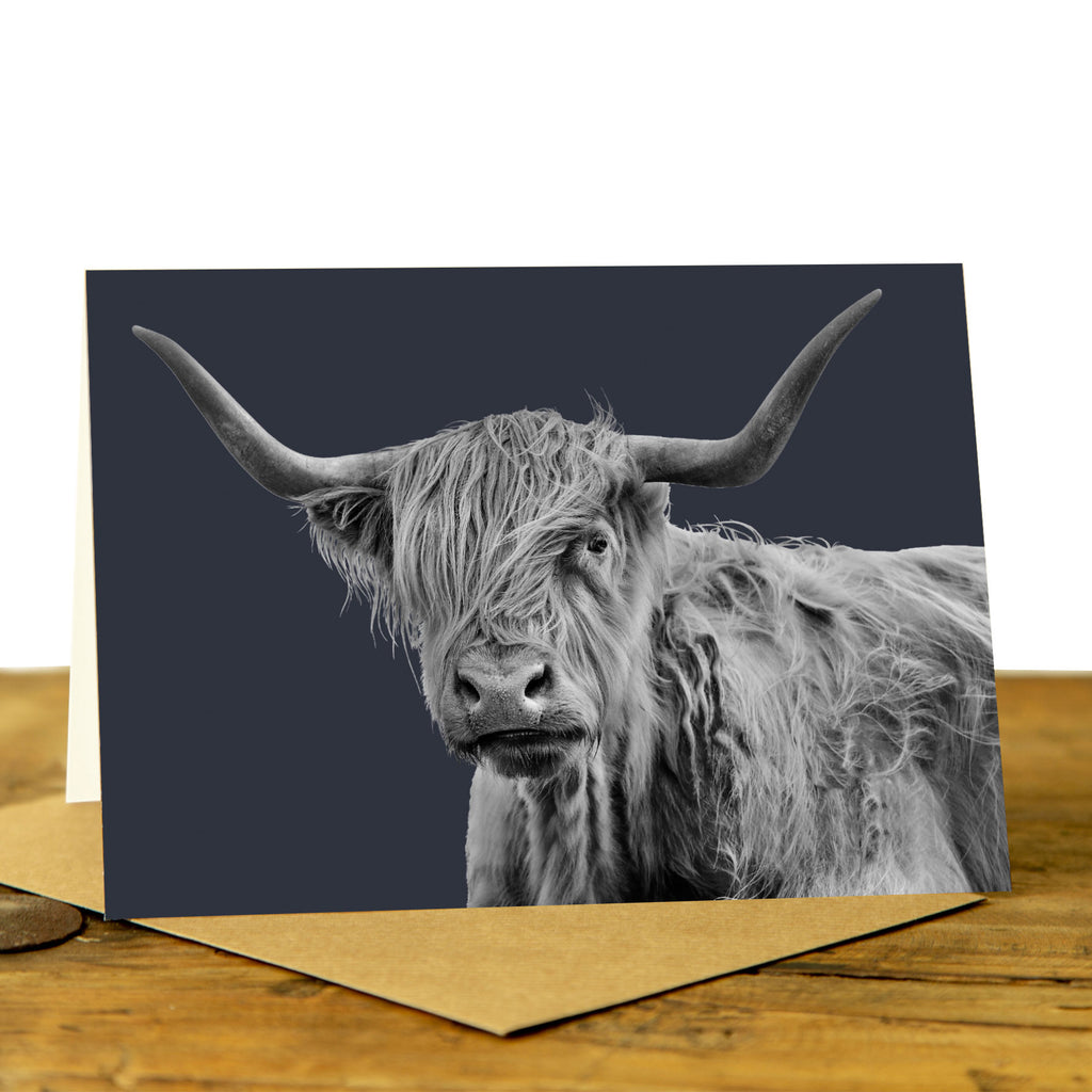 Shaggy Highland Cow Greeting Card
