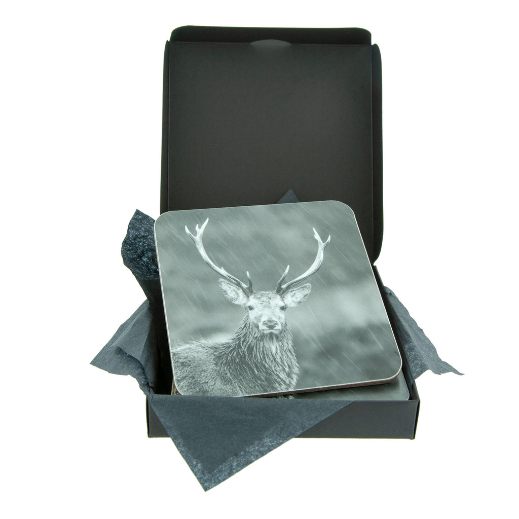 Highland Stag in the Rain Coaster - Gift Box