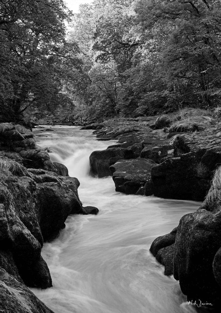 The Strid, Bolton Abbey, Yorkshire Dales - Landscape Photography