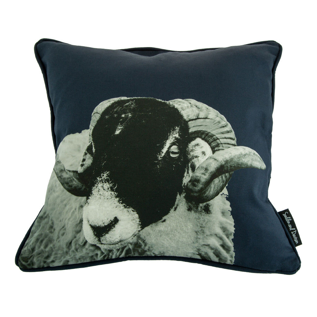 Swaledale Sheep Cushion - Blackberry