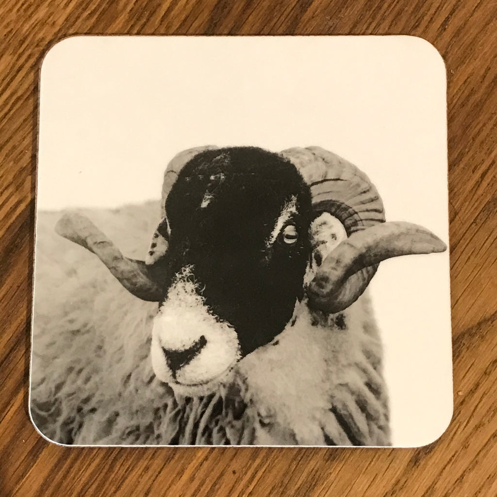 Swaledale Sheep Coaster White