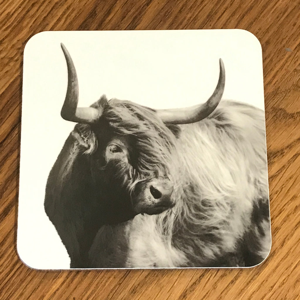 Windswept Highland Cow Coaster - White