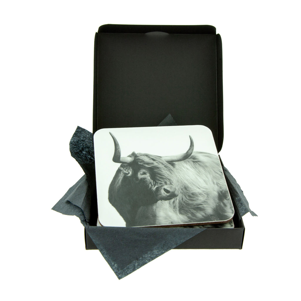 Windswept Highland Cow Coaster - White - Gift Box
