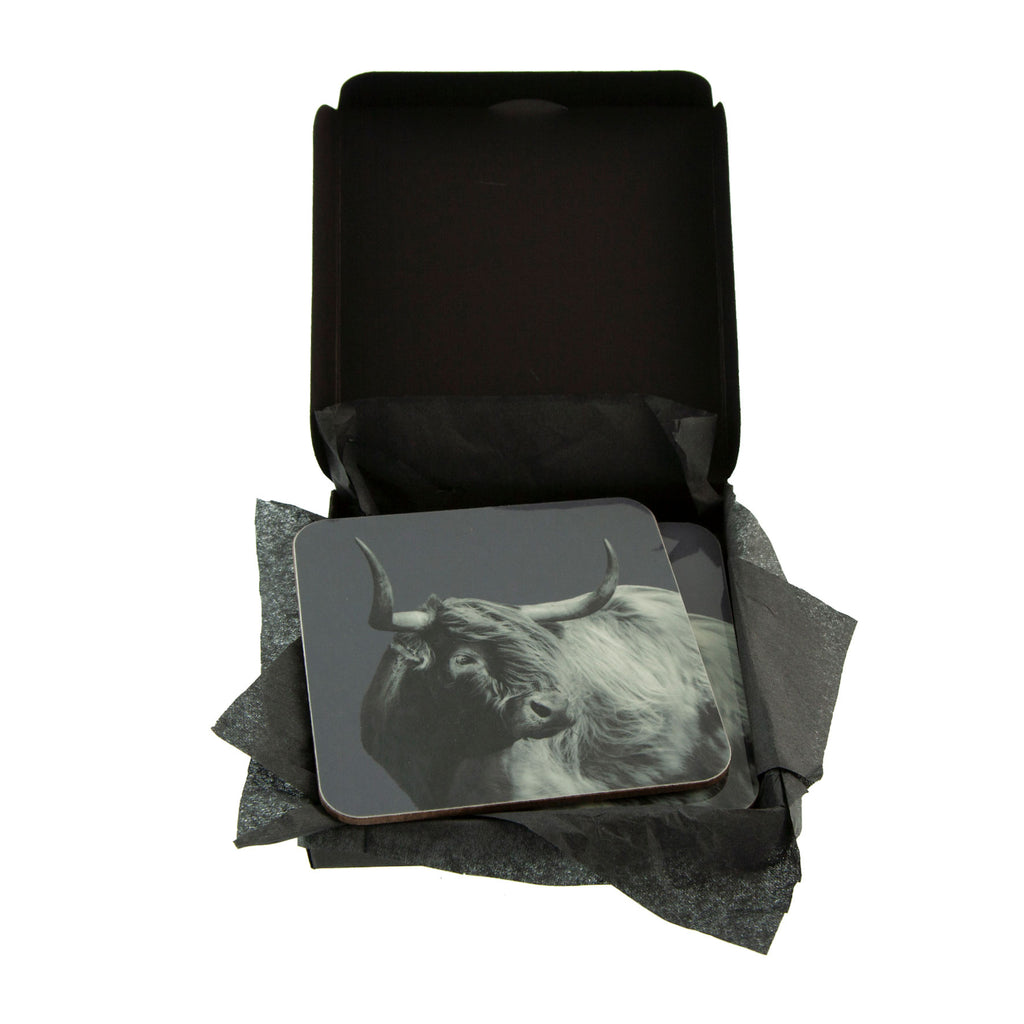 Windswept Highland Cow Coaster - Charcoal - Gift Box