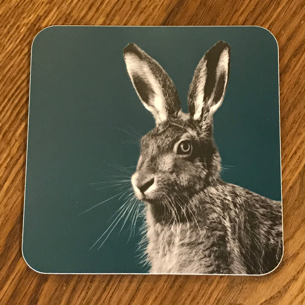 hare coaster teal