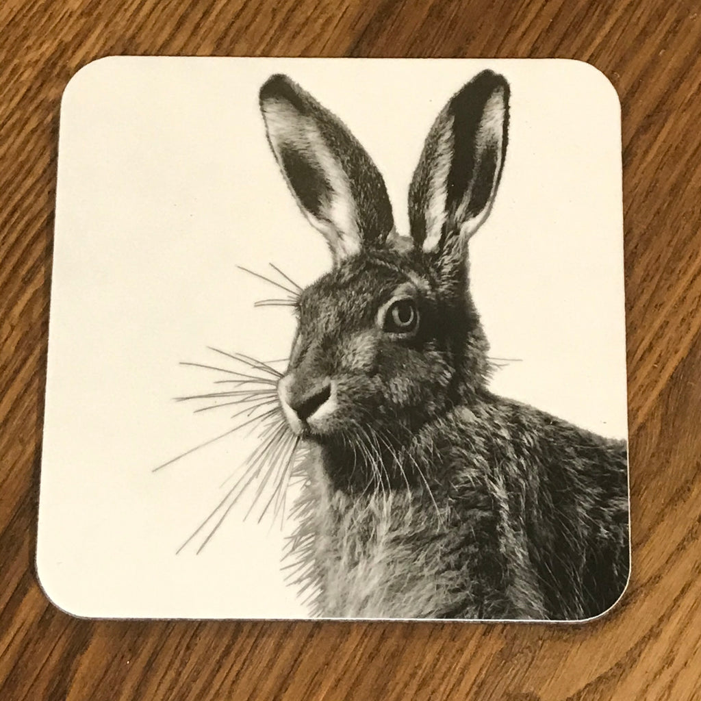 hare coaster white