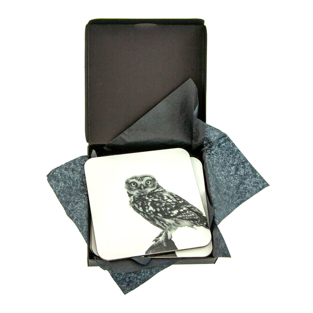 Little Owl Standing Coaster - Gift Box