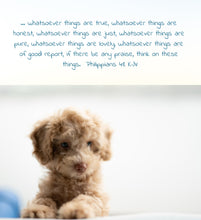 Load image into Gallery viewer, philippians 4 8 bible verse cute puppy whatsoever things are true