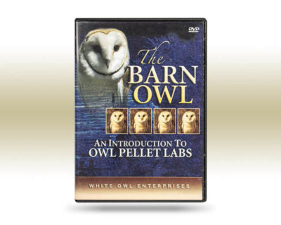 barn owl dissection dvd