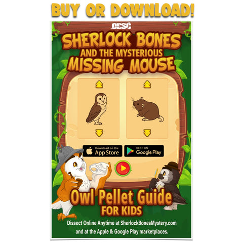 Sherlock Bones Owl Pellet Guide for Kids