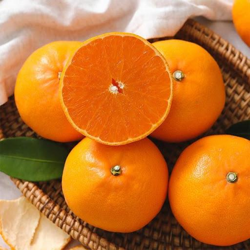 Cheonhyehyang Jeju Tangerine (3kg Box) | Next Day Delivery