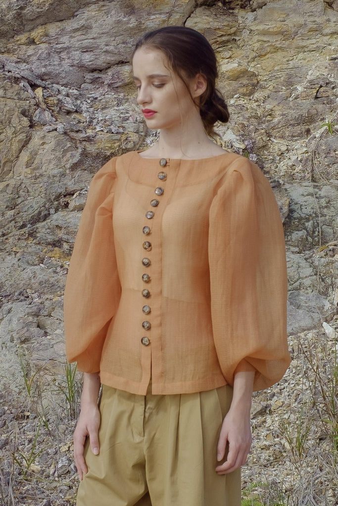 Sheer Blouse with Puff Sleeves