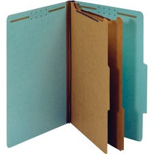 Pendaflex 2-divider Recycled Classification Folders