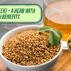 Methi (Fenugreek) – A Herb With Amazing Health Benefits